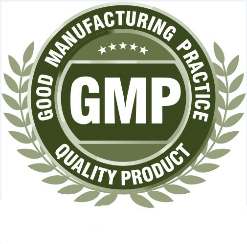 GMP - Green Day