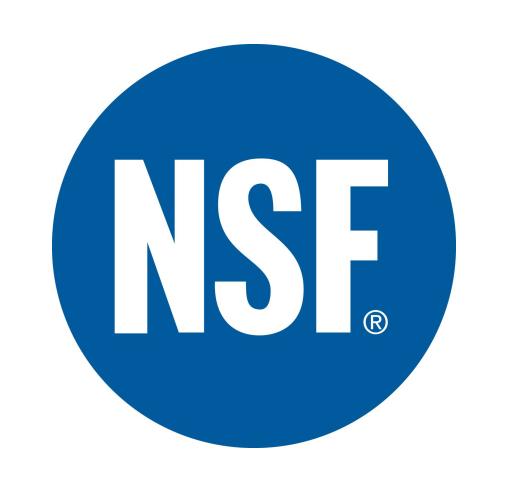 NSF - Green Day
